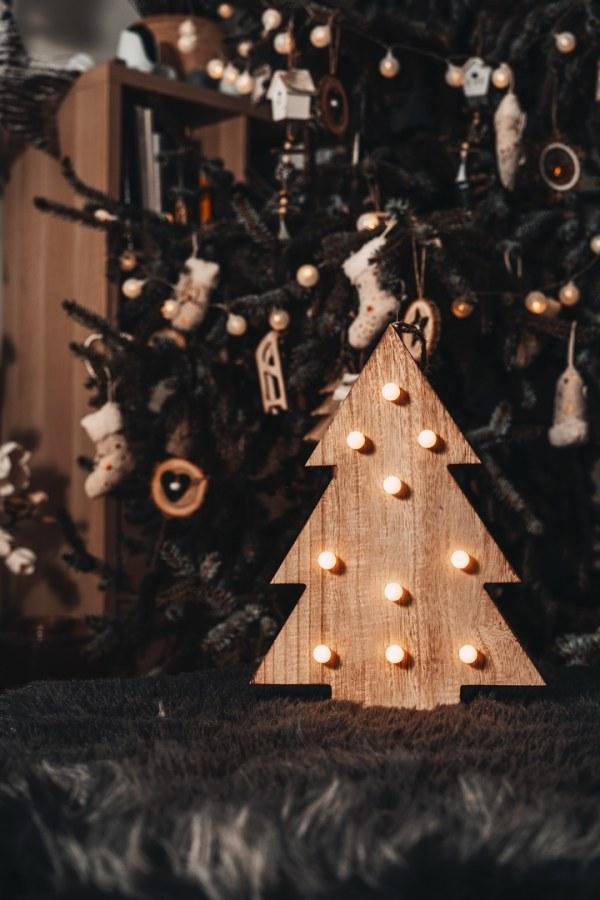 Svítící stromeček - LED - 30CM